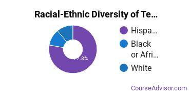 Racial-Ethnic Diversity of Teacher Education Grade Specific Majors at Luna Community College