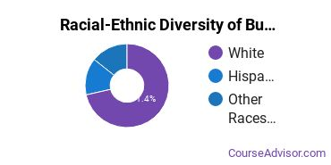 Racial-Ethnic Diversity of Business Support & Assistant Services Majors at Luzerne County Community College