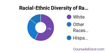 Racial-Ethnic Diversity of Radio, Television & Digital Communication Majors at Luzerne County Community College