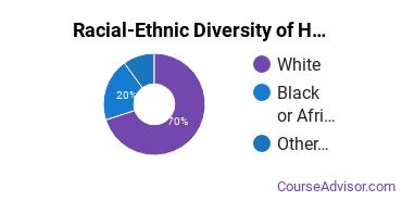 Racial-Ethnic Diversity of Human Services Majors at Luzerne County Community College