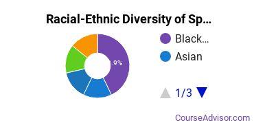Racial-Ethnic Diversity of Specialized Sales, Merchandising & Marketing Majors at Marymount University