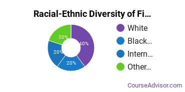 Racial-Ethnic Diversity of Fine & Studio Arts Majors at Marymount University
