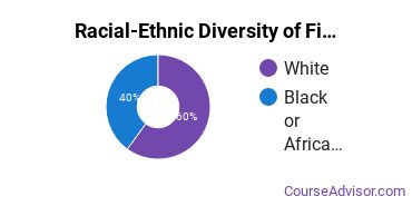 Racial-Ethnic Diversity of Fine & Studio Arts Majors at Minneapolis Community and Technical College