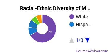 Racial-Ethnic Diversity of MVCC Undergraduate Students