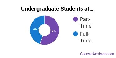 Full-Time vs. Part-Time Undergraduate Students at  Navajo Tech