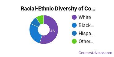 Racial-Ethnic Diversity of Community Organization & Advocacy Majors at Nazareth College