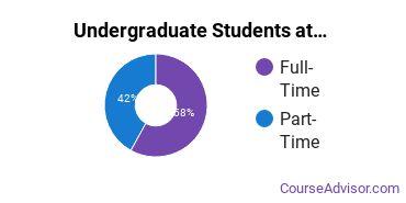 Full-Time vs. Part-Time Undergraduate Students at  Newman University