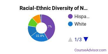 Racial-Ethnic Diversity of Northeastern Illinois University Undergraduate Students