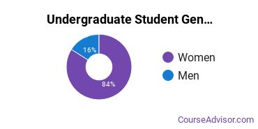 Undergraduate Student Gender Diversity at  Northwest Career College