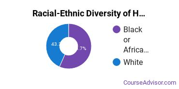 Racial-Ethnic Diversity of Health & Medical Administrative Services Majors at Northwest Mississippi Community College