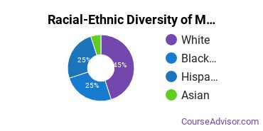 Racial-Ethnic Diversity of Mental & Social Health Services Majors at University of Holy Cross