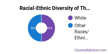 Racial-Ethnic Diversity of Theological & Ministerial Studies Majors at University of Holy Cross