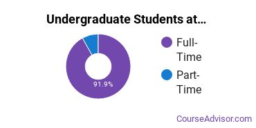 Full-Time vs. Part-Time Undergraduate Students at  Pace University