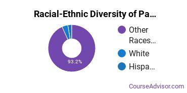 Racial-Ethnic Diversity of Paul Mitchell the School Nampa Undergraduate Students