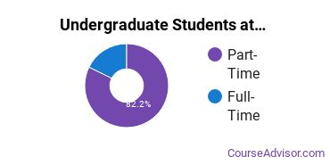 Full-Time vs. Part-Time Undergraduate Students at  PCI Academy-Ames