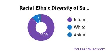 Racial-Ethnic Diversity of Sustainability Science Majors at Rhode Island School of Design