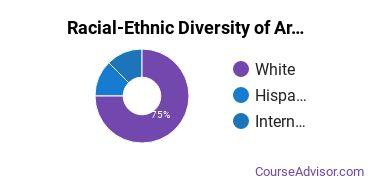 Racial-Ethnic Diversity of Arts & Media Management Majors at Rider University