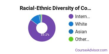 Racial-Ethnic Diversity of Computer Science Majors at Rochester Institute of Technology