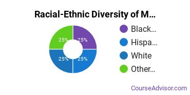 Racial-Ethnic Diversity of Mechanical Engineering Technology Majors at Saint Louis Community College