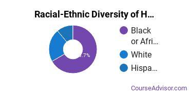 Racial-Ethnic Diversity of Human Development & Family Studies Majors at Saint Louis Community College