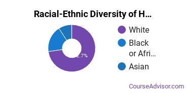 Racial-Ethnic Diversity of Health & Medical Administrative Services Majors at Saint Louis Community College
