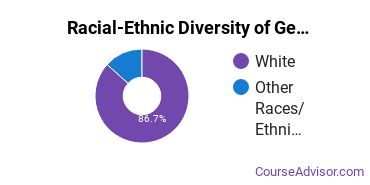 Racial-Ethnic Diversity of General English Literature Majors at Salve Regina University