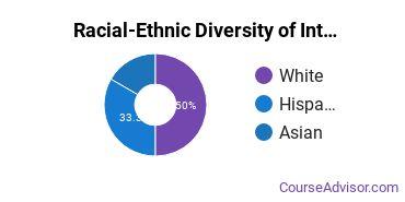 Racial-Ethnic Diversity of International Studies Majors at Salve Regina University