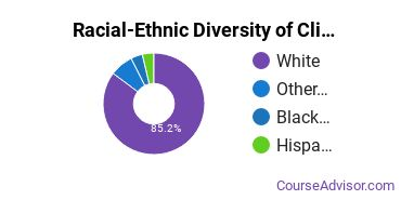 Racial-Ethnic Diversity of Clinical, Counseling & Applied Psychology Majors at Salve Regina University