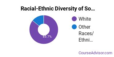 Racial-Ethnic Diversity of Sociology Majors at Salve Regina University