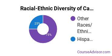 Racial-Ethnic Diversity of Carpentry Majors at San Juan College