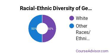 Racial-Ethnic Diversity of General Engineering Majors at San Juan College