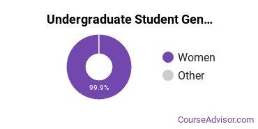 Undergraduate Student Gender Diversity at  Simmons