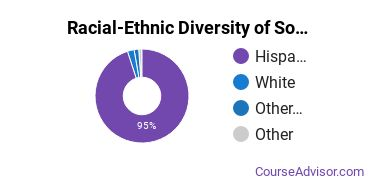 Racial-Ethnic Diversity of South Texas College Undergraduate Students