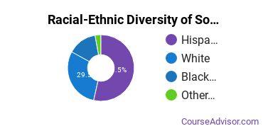 Racial-Ethnic Diversity of Southern Careers Institute - San Antonio (NW Loop) Undergraduate Students