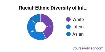 Racial-Ethnic Diversity of Information Technology Majors at Southern Methodist University