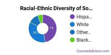 Racial-Ethnic Diversity of Southwest University of Visual Arts - Albuquerque Undergraduate Students