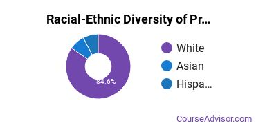 Racial-Ethnic Diversity of Precision Metal Working Majors at Spartanburg Community College