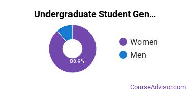 Undergraduate Student Gender Diversity at  Standard College of Nursing