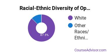 Racial-Ethnic Diversity of Ophthalmic & Optometric Support Services Majors at Stark State College