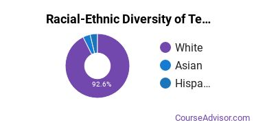 Racial-Ethnic Diversity of Teacher Education Grade Specific Majors at Stonehill College