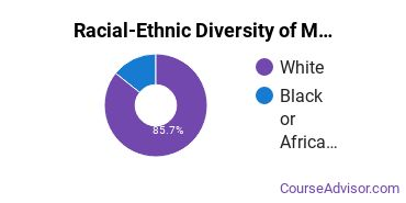 Racial-Ethnic Diversity of Mathematics Majors at Stonehill College