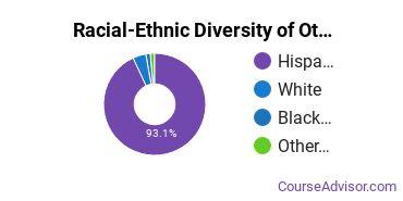 Racial-Ethnic Diversity of Other Multi/Interdisciplinary Studies Majors at Sul Ross State University