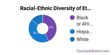 Racial-Ethnic Diversity of Ethnic Studies Majors at SUNY Oneonta