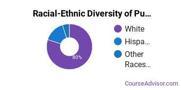 Racial-Ethnic Diversity of Publishing Majors at Susquehanna University