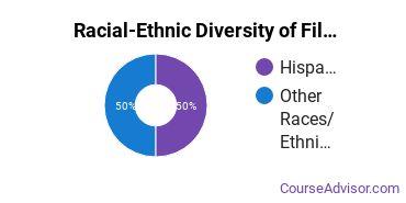 Racial-Ethnic Diversity of Film, Video & Photographic Arts Majors at The Art Institute of Las Vegas