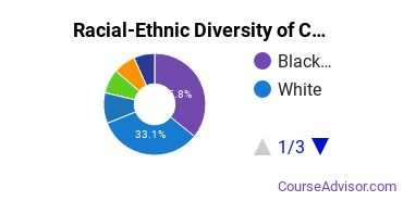 Racial-Ethnic Diversity of CCBC Undergraduate Students