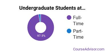 Full-Time vs. Part-Time Undergraduate Students at  Creative Center