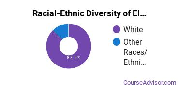 Racial-Ethnic Diversity of Electromechanical Engineering Technology Majors at Tri-County Technical College
