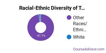 Racial-Ethnic Diversity of TMCC Undergraduate Students