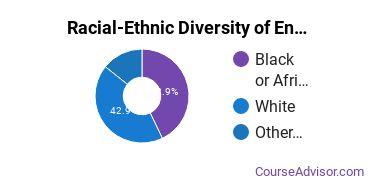 Racial-Ethnic Diversity of English Language & Literature Majors at University of Baltimore